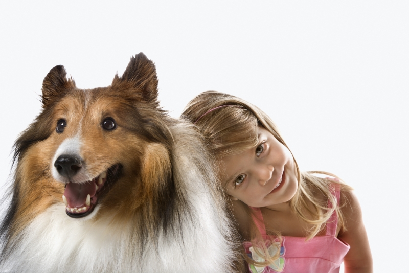 -girl-child-with-collie-dog